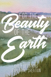 For the Beauty of the Earth