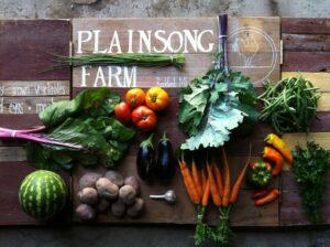 Plainsong Farm vegetables